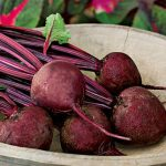 Beet Detroit Dark Red Med Top