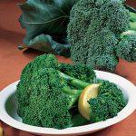 Broccoli Bonanza Hybrid