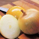 Onion Candy Hybrid