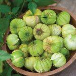 Tomatillo Green Organic