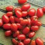 Tomato Cherry Roma