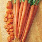 Carrot Burpee A#1 Hybrid