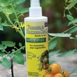 Tomato & Vegetable Blossom Set Spray