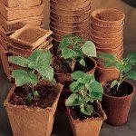 Round Fiber Pots 3 inch