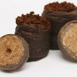 Netted Coir Pellets