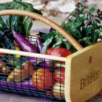 Burpee's Garden Hod