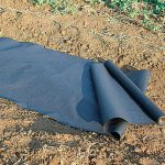 Planters Paper Mulch 2′ X 50′
