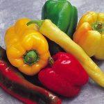 Favorite Sweet Pepper Collection