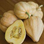 Squash Thelma Sanders Sweet Potato