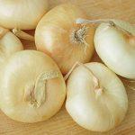 Onion Cippolina Borretana