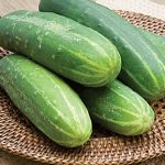 Cucumber Straight Eight Organic