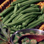 Okra Clemson Spineless Organic