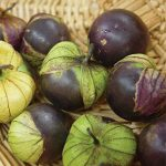 Tomatillo Purple Organic