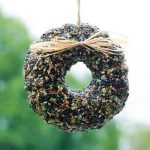 Wild Bird Seed Wreath Spring
