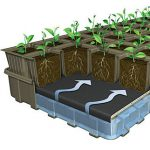 XL 32-Cell Eco Friendly Ultimate Growing System