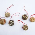 Bird Seed Holiday Balls