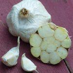 Garlic Italian Loiacono