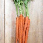 Carrot Mokum Hybrid