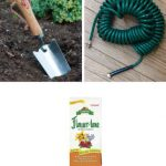 Sunflower Super Success Gift Kit