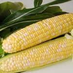 Corn Sweetness Hybrid