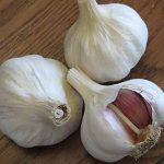 Garlic Spanish Benitee