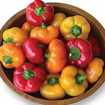 Pepper Sweet Hungarian Cheese Hybrid Mix