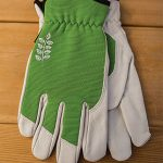 Women's Kobalt Goatskin Gloves – Green