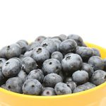 Blueberry Toro